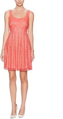 Ali Ro Lace Scoopneck Dress