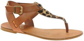 Carvela Kenya Leather Leopard Flat Sandals