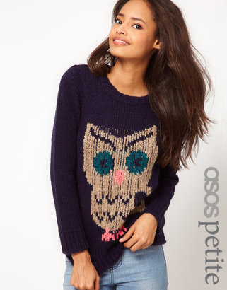 Asos Exclusive Chunky Owl Sweater