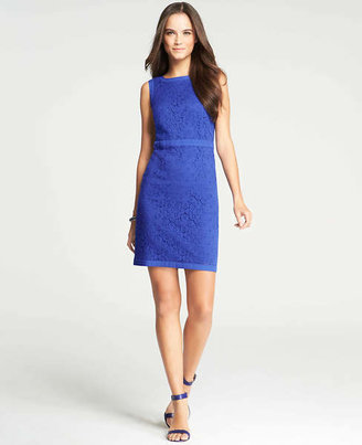 Ann Taylor Tall Redefined Lace Sheath Dress