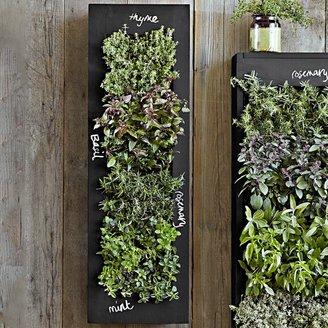 Williams-Sonoma Williams Sonoma Rectangular Chalkboard Wall Planter