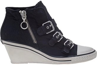 Ash Gin Wedge Sneaker Black Canvas