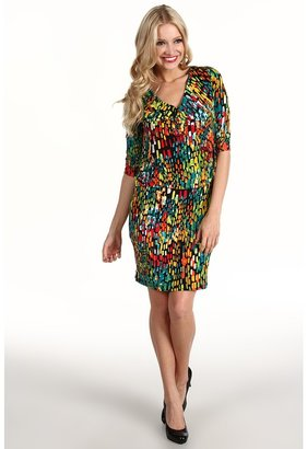 Ellen Tracy Sundrops Blouson Dress (Sundrops) - Apparel