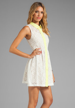 Testament Lace Oxford Dress
