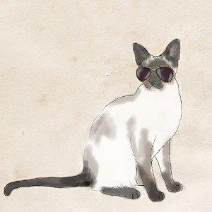 PTM Images Cool Cat Ii Wall Art