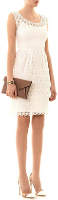 Collette Dinnigan Collette by Daisy chain lace dress