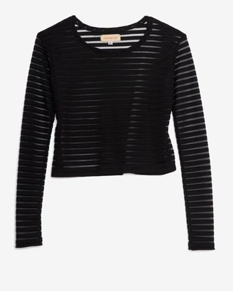 Otis & Maclain Sheer Stripe Crop Tee: Black