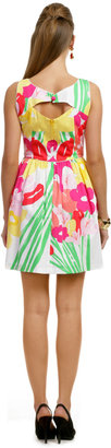 Lilly Pulitzer May Flowers Dress