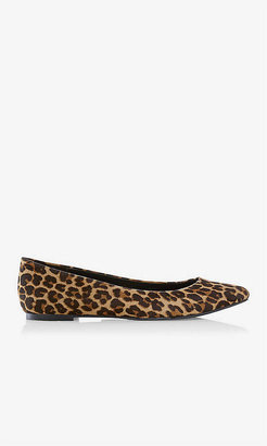 Express Leopard Print Pointed Toe Flat