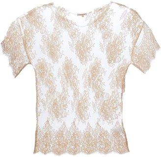 P.A.R.O.S.H. sheer floral lace t-shirt