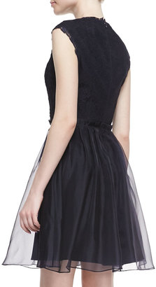 Ted Baker Jessika Lace Fit-And-Flare Dress, Navy