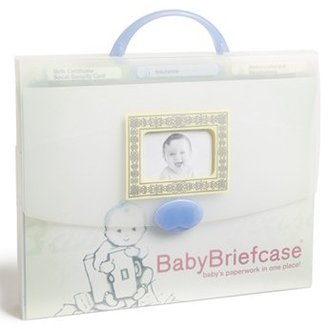 Babybriefcase Document Organizer $29.95 thestylecure.com