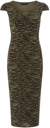 Dorothy Perkins Khaki zebra tube dress