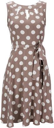 Wallis Taupe Polka Dot Petite Dress