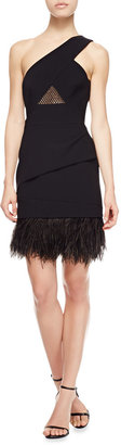Paule Ka One-Shoulder Ostrich Feather-Hem Dress
