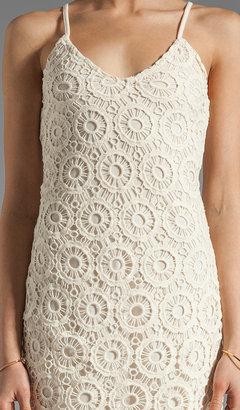 BB Dakota Lynchburg Lace Mini Dress
