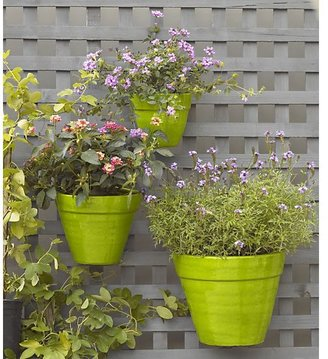 Crate & Barrel Hermione Wall Planters