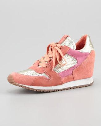 Ash Colorblock Wedge Sneaker