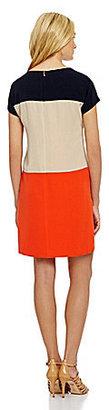 Jones New York Collection Colorblock Shift Dress