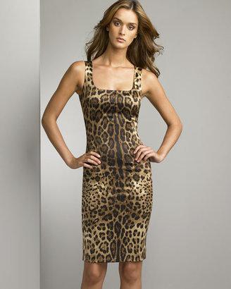 D&G Dolce & Gabbana Animal-Print Sheath Dress