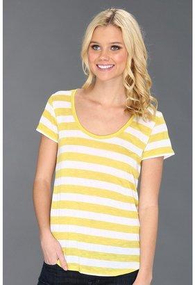 C&C California Americana Stripe Jersey (Warm Olive) - Apparel
