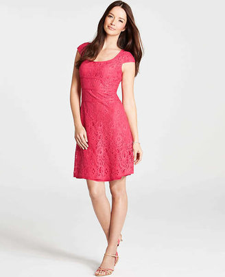 Ann Taylor Cap Sleeve Lace Dress