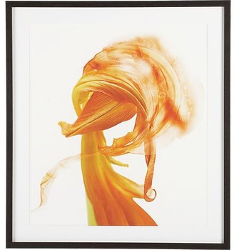 Crate & Barrel Orange Tulip Print