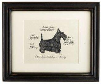Ballard Designs Scottish Terrier Dog Print