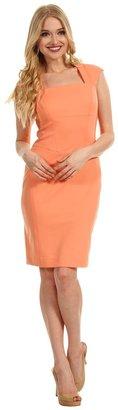 Maggy London Seamed Cap Sleeve Ponte Sheath Dress (Apricot) - Apparel