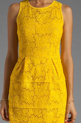 Nanette Lepore Sierra Madre Lace Treasure Dress
