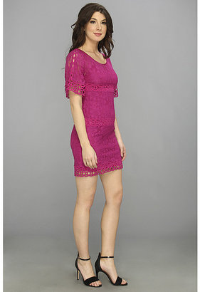 Laundry by Shelli Segal Bell Sleeve Lace Shift Dress