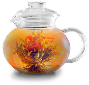 Primula Glass Tea Pot With Infuser 40oz