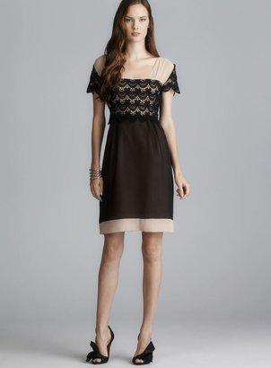 philosophy Sheer Lace Panel Dress