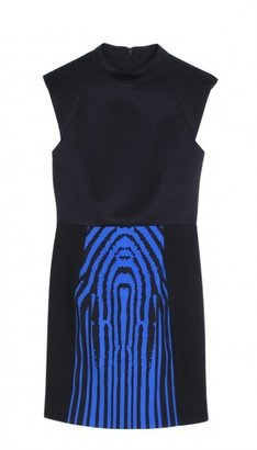 Tibi Zebra Stripe Dress