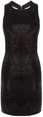 Coast Devona dress