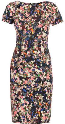 Erdem Joyce Dartry park-print dress