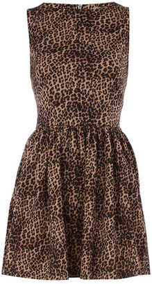 Dorothy Perkins Leopard print skater dress