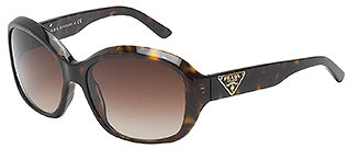 Prada Classic Logo Sunglasses - Havana