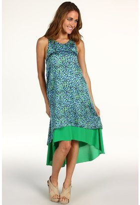 Sachin + Babi Vineyard Dress (Floral Print) - Apparel
