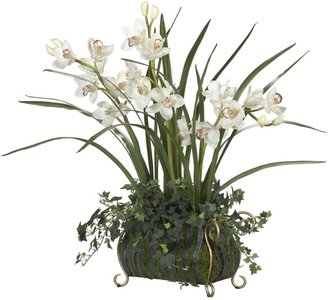 Ethan Allen Cymbidium orchid