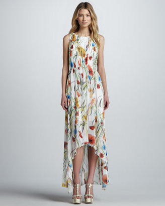 Alice + Olivia Mel Floral-Print Maxi Dress