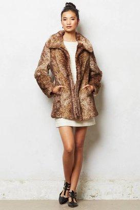 Anthropologie Adani Coat