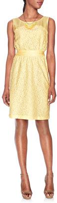 The Limited Chiffon & Lace Dress