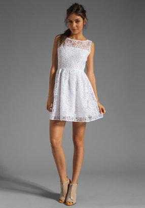 BB Dakota Huela Organza Embroidered Dress