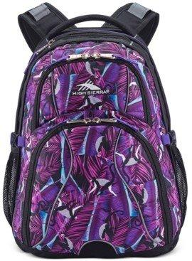 High Sierra Men's Swerve Backpack