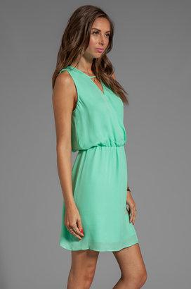 Parker Suri Dress