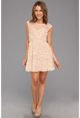 Type Z Hayden Lace Dress (Champagne) - Apparel
