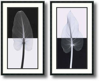 Amanti art 2-pc. ''Calla Leaves'' Framed Wall Art Set by Steven Meyers