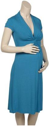 Olian Short Sleeve Lycra Dress - Teal-X-Small