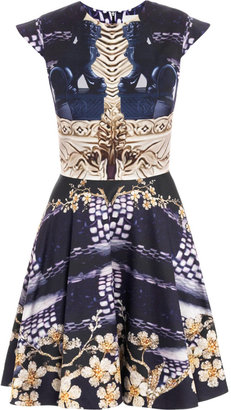 Mary Katrantzou Babelona darko bulldogs dress